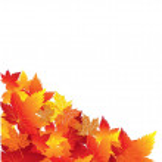 Постер, плакат: Leaf