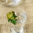 Russian vodka — Stock Photo #4042106