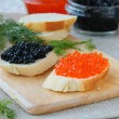Red and black caviar - Stock Photo