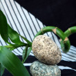Royalty-Free Stock Photo: Spa concept of stones and a branch bamboo