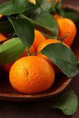 Frische mandarine — Stockfoto