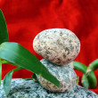 Spa concept of stones and a branch bamboo — Stock Photo