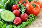 Organic mix of fresh vegetables — Stock Photo