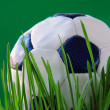 Stock Photo: Football on green grass