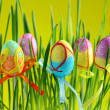 Easter eggs in grass — Stock Photo #5043395