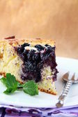 Beautiful home made blueberry pie — Stock Photo