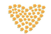 Yellow rose with heart shape — Stock Photo
