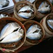 Stock Photo: Fishs on round box