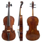 Old violin sides — Stock Photo