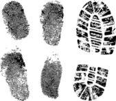 Fingerprints and bootprint — Stock Vector