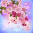 Royalty-Free Stock Vector Image: Vector background with gentle sakura branch of  flowers