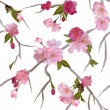 Vector seamless background with gentle sakura flowers - Stock Vector