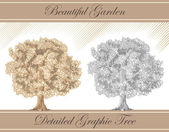 Detailed graphic vector tree sepia and pencil — Stock Vector