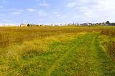 The road through meadows — Stock Photo