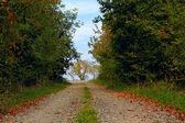 Piękna jesień — Zdjęcie stockowe