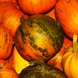 Oodles of orange and yellow ripe pumpkins — Stock Photo