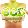 Hands holding eco sign with green leafs — Stock Photo
