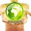 Hands holding earth with green leafs — Stock Photo