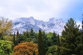 Dramatic view on Ai-Petri mountain — Stock Photo