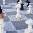 Playing chess outdoors - Foto de Stock