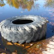 The big tire from the car. - Stockfoto