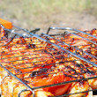 Barbecue, grill. - Foto de Stock