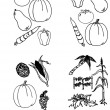 Royalty-Free Stock ベクターイメージ: Vector set - doodles - vegetables