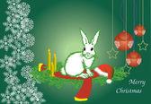 Beyaz tavşan — Stok Vektör