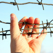 Hand of prison and sky background — Stock Photo #4923328