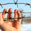 Hand of prison and sky background — Stock Photo
