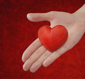 Red heart in the hand — Stock Photo