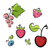 Berries collection — Stock Vector