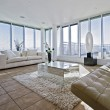 Massive living room with chunky white sofas — 图库照片
