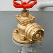 Stock Photo: Hydrant