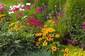Well-groomed spring garden — Stock Photo