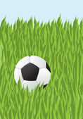 Football in a grass — Vecteur