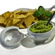 Guacamole and nachos — Stock Photo #5173171
