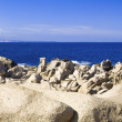 Capo Testa, Sardinia — Stock Photo
