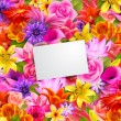 Flower background — Stockvectorbeeld