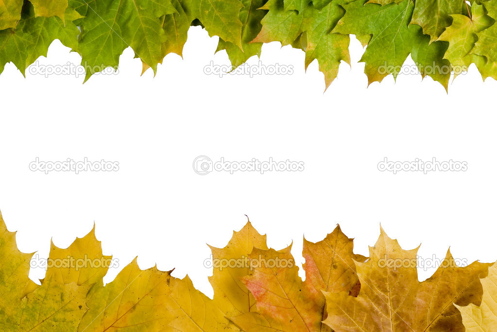 Fall Leaves Page Border http://depositphotos.com/4110716/stock-photo-Autumn-leaves-border.html