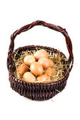 Fresh eggs in the basket — Stock Photo