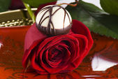Red rose and chocolate — Stock Photo