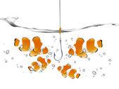 Clown Fish — Stock Vector