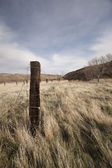 Old fence post in an open field — Stock Photo