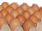Eggs in the package — Stock Photo