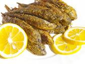 Fried fish. Gobies — Stock Photo