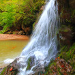Waterfall in a autumnal forest — Stock Photo