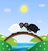 Two sheep — Stock Vector