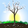 Flowering tree - Stock Vector