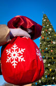 Hand holding a bag with the Christmas tree — Stockfoto